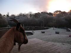 Eté comme hiver, il y a toujours une animation à la villa du guip en Bretagne sud dans le Finistère decouvrez Concarneau, Pont Aven, Douarnenez