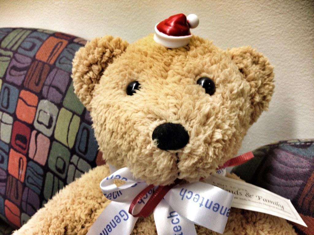 Speech Therapy Bear
