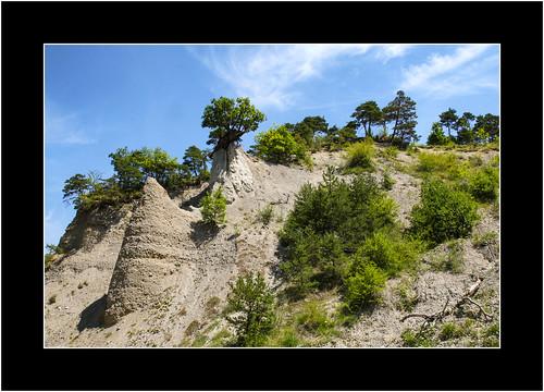Vercors Landscape