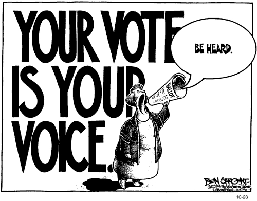 YOUR VOTE IS YOUR VOICE - BE HEARD