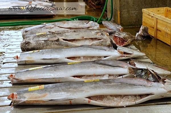 Tsukiji Market Tuna Auction - Tokyo Japan-014