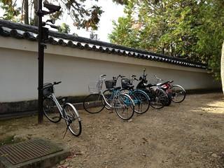 東福寺 #2