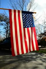 Flag Flying on Veterans Day (Observed)