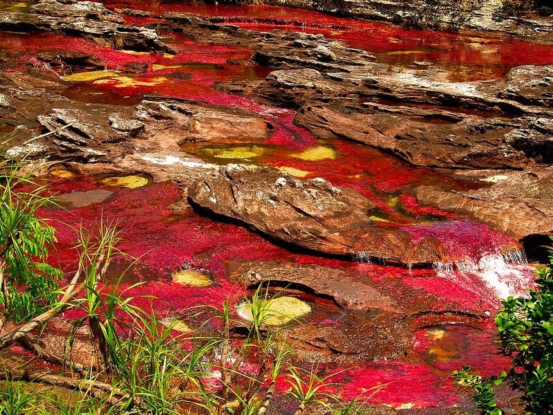 The 5 Color River - Hidden Paradise