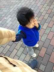 朝散歩 (2012/11/16)