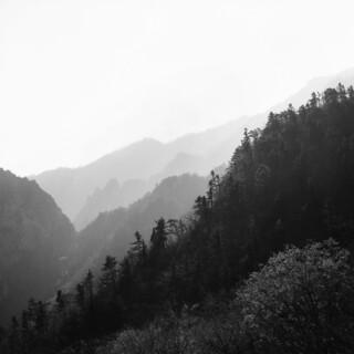 Film_Black&White1287