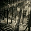 #Kumonosu-jō #Akira #Kurosawa #ThroneofBlood