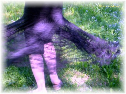 Spiderweb_3