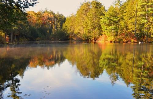 autumn johnjmurphyiii connecticut bigelowhollow statepark nipmuck stateforest usa 06076 foliage
