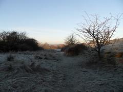 Winter December& Jan 2012/13