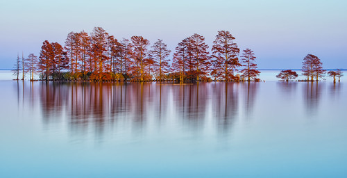 travel sunset lake water beautiful landscape nikon northcarolina cypress refections nationalwildliferefuge d600 easterncarolina mattamuskeet lakemattamuskeet mygearandme mygearandmepremium mygearandmebronze mygearandmesilver mygearandmegold mygearandmeplatinum