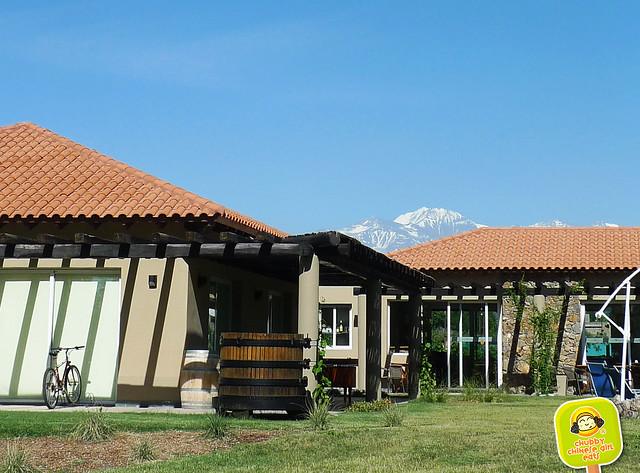 villa mansa wine hotel, mendoza 3