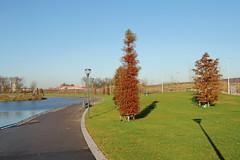 Bijlmerpark - Amsterdam (Netherlands)