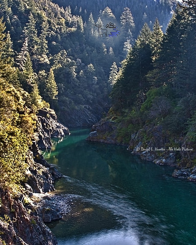 california unitedstatesofamerica smithriver delnortecounty redwoodforest californiaredwoods greenpool southforksmithriver
