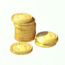 13寶可夢金幣