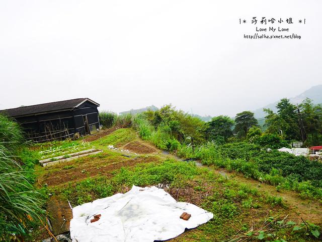 貓空美食泡茶餐廳推薦清泉山莊 (4)
