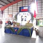 Fiestas Patrias II