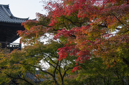 Red leaves of Nanzen-Ji, Kyoto / 南禅寺の紅葉(京都)