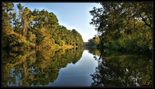 trees nature water landscape texas bayou pasadena canoeing paddling armandbayou sonya700 wanam3