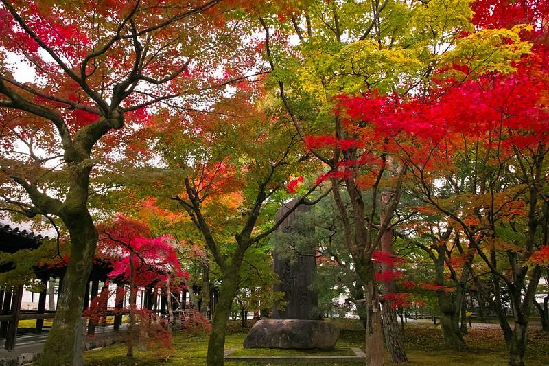 東福寺 #4
