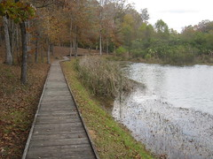 36. The Mill Pond and Boardwalk