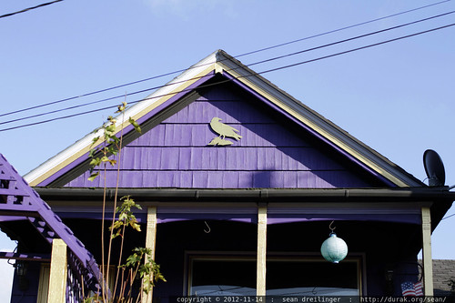 house in sellwood   somebody actually put a bird on it   day in the life of a banjo parts engineer    MG 7120