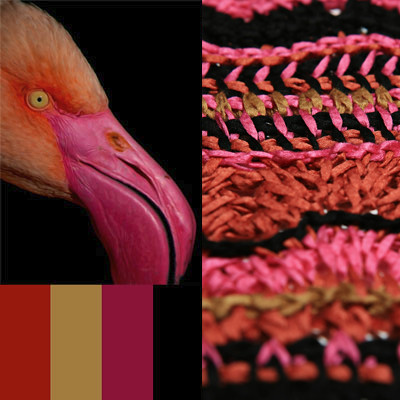 Flamingo Yarn Palette