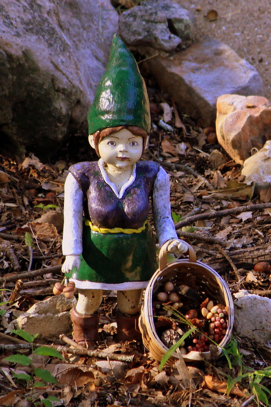 Rock City's Gnome Valley #3: Gathering nuts & berries