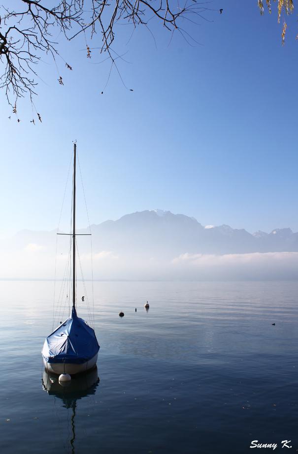 Misty Montreux 2