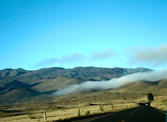 road_to_mauna_kea