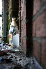 Abandoned Bottle