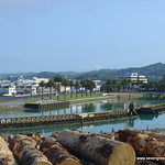 FotoFriday 6: Gisborne Harbour