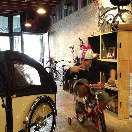 $80 in kiddie bike stuff and a lot of flava.