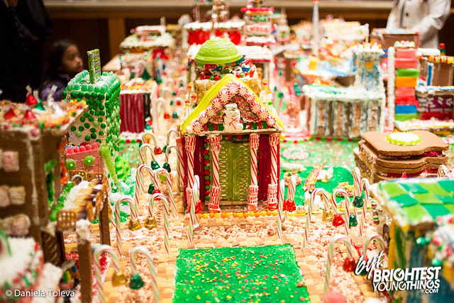 Gingertown-20121129-005