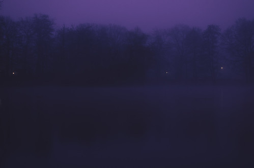 morning trees winter water fog sunrise germany dark soft darkness purple pastel melancholy 木 冬 mystic trier creamy melancholic longtimeexposure 夜 霧 幽玄 mattheiserweiher nikon35mmf18dx nikond7000 alienskinexposure4