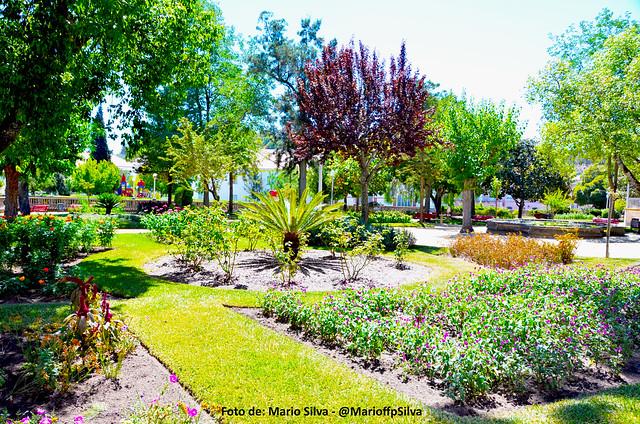 Imagem jardim em Montemor o Novo