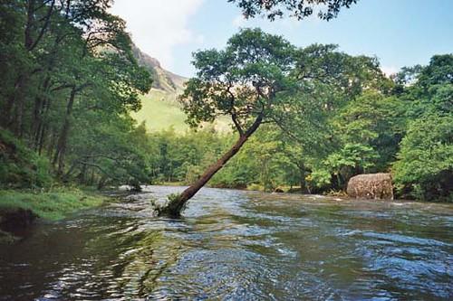Flooded River Derwent