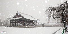 Korea_Seoul_Snow_11