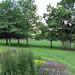Chautauqua Lawn