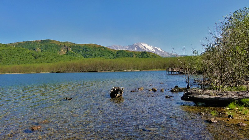Coldwater Lake, with the creek delta in the middle ground and Mount St. Helens in the background.