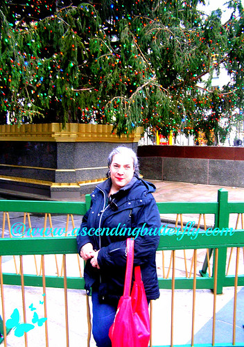 mama butterfly in front of rockefeller center christmas tree 03 holidays 2012 WATERMARKED