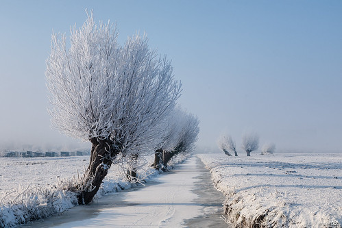 winter mist snow holland ice fog barn canon weide ditch sneeuw nederland thenetherlands meadow willow kinderdijk ripe sloot ijs zuidholland wilgen rijp schuurtje canoneos5d canonef24105mmf4lisusm coth5 bracom ruby15 ruby20 bramvanbroekhoven