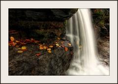 Early Autumn at Natural Dam