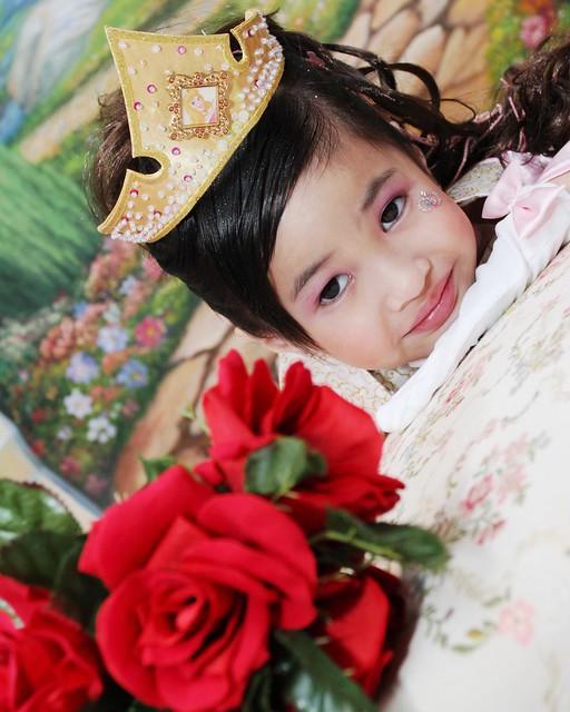 HKDL,63768,12-12-2012