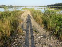2016-09-04My Shadow on peninsula