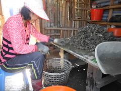 辛勤挖蚵的農民,家裡也種些無毒的蔬菜。