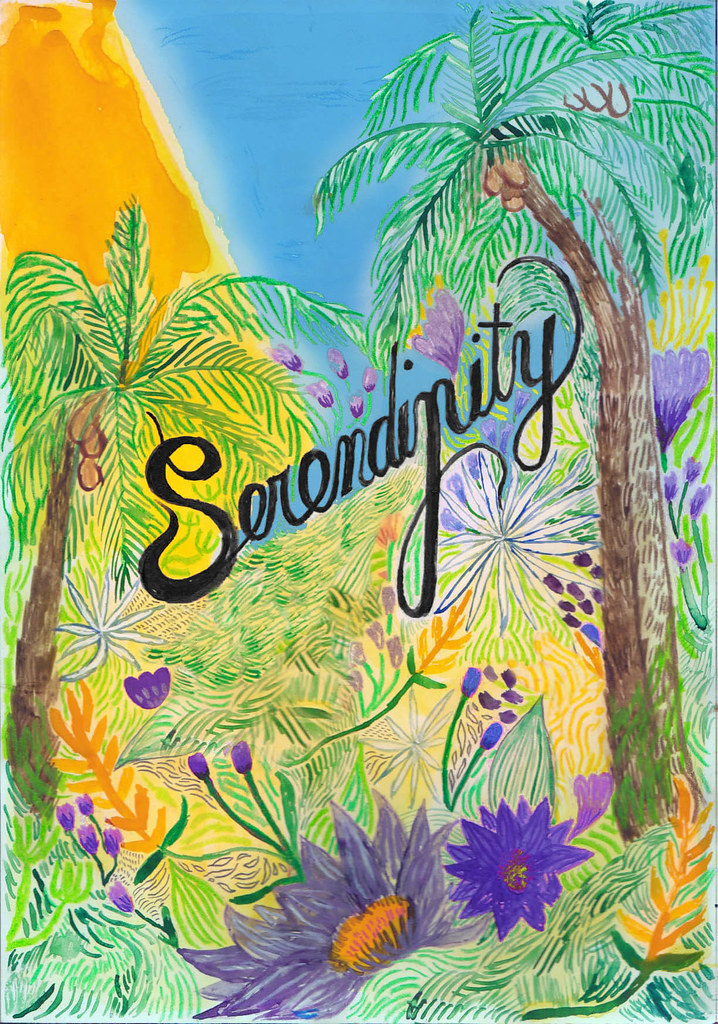 SERENDIPITY by ASHOK FERREY rough
