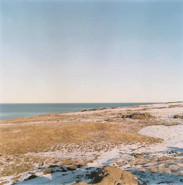 Greenland Sea.