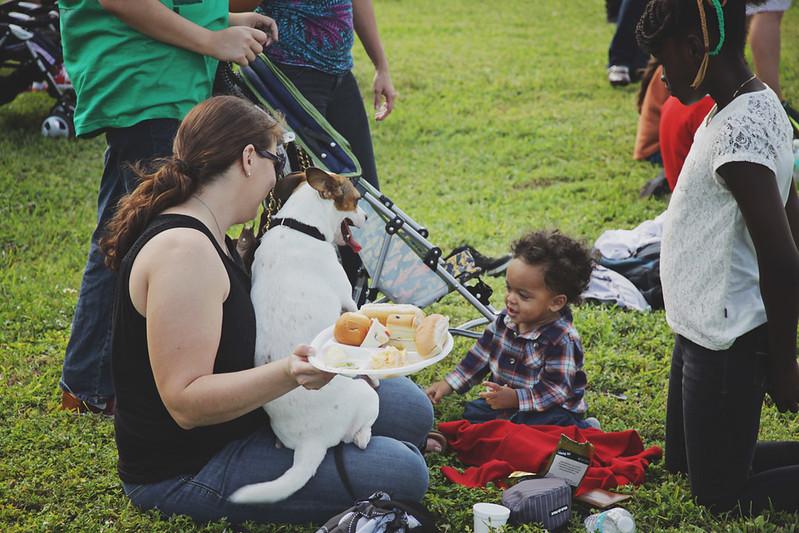 company picnic 8