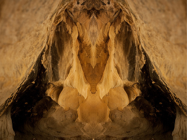 Portrait of a Cave